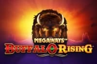 PLay Buffalo Rising Megaways Slot Review