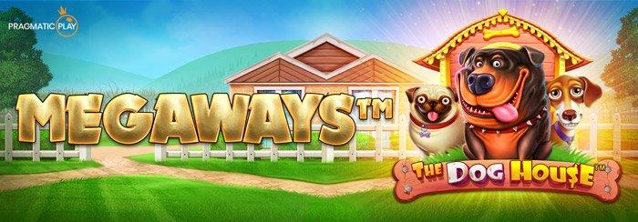 The Dog House Megways Slot from Pragmatic Play